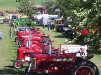 Farmall tractors lined up on display.