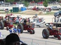 International Gold Demonstrator tractors on parade